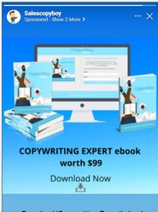 Facebook ad copy for copywriting ebook